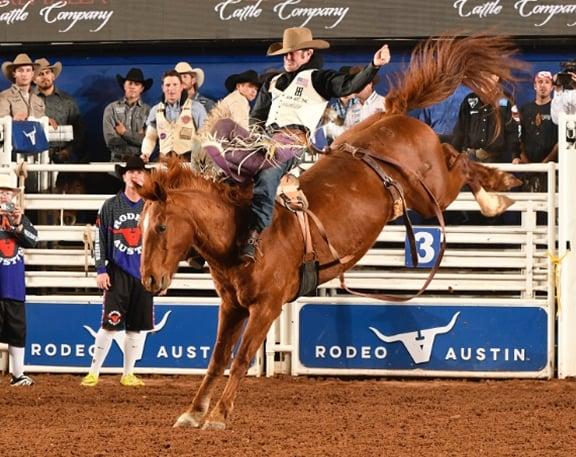 man riding bucking horse in Rodeo Austin arena