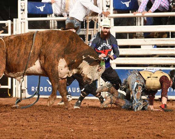 bullfighter helping cowboy escape bull