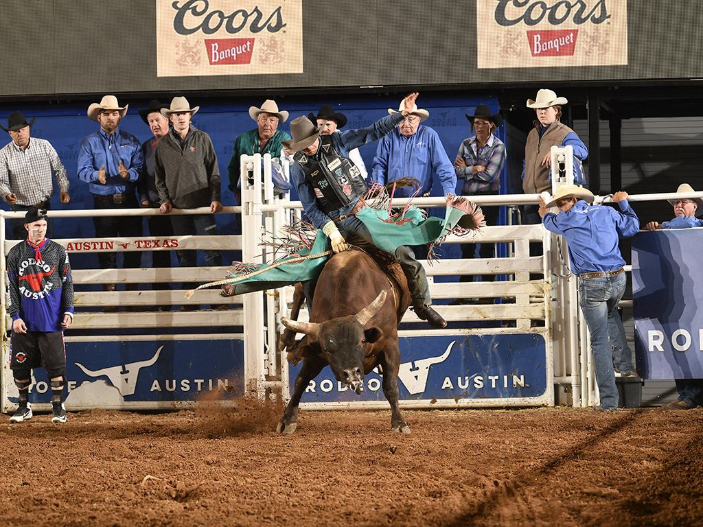Cowboy a top a bull at Rodeo Austin